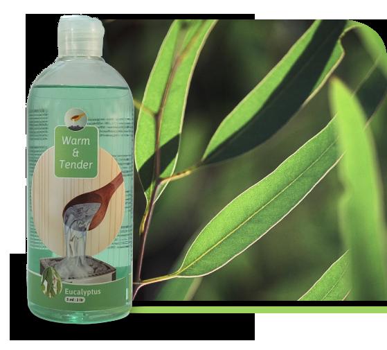 Eucalyptus-geur